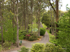 Mount Lofty Botanic Garden - Wagga Wagga Accommodation