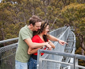 Valley of the Giants Tree Top Walk - Wagga Wagga Accommodation