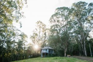 Bluegums Cabins - Wagga Wagga Accommodation